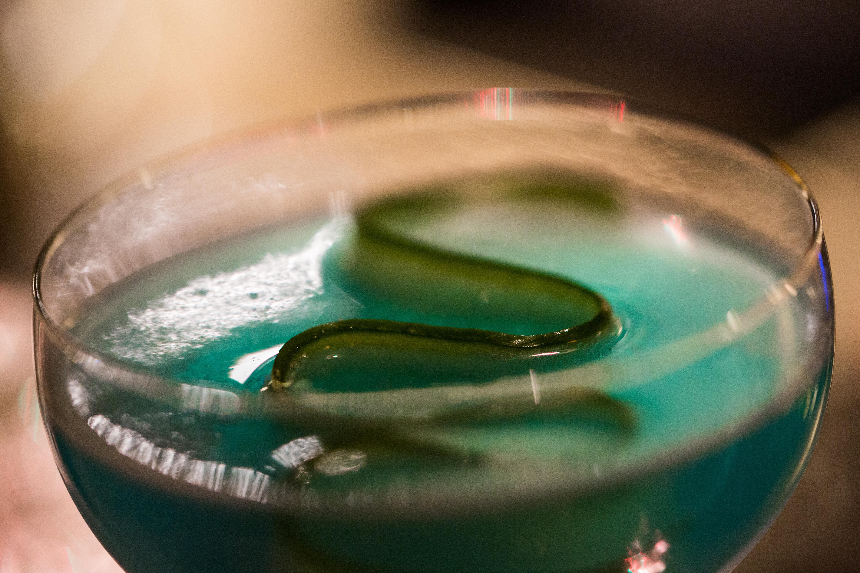 cocktail-fannygaudin-5255